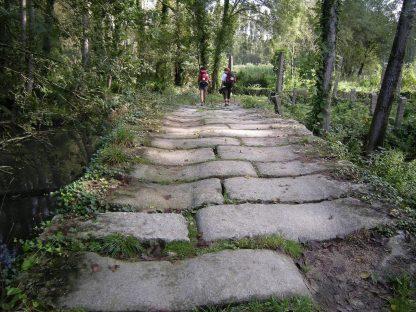 Camino de Santiago portugués_GaliWonders-min