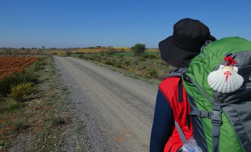 Camino frances galiwonders