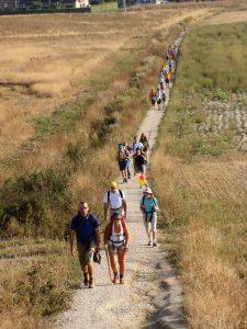 camino-santiago-1180770