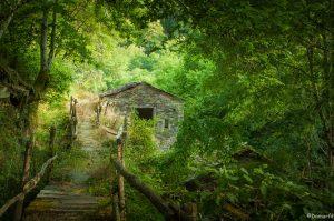 Landscape Galicia