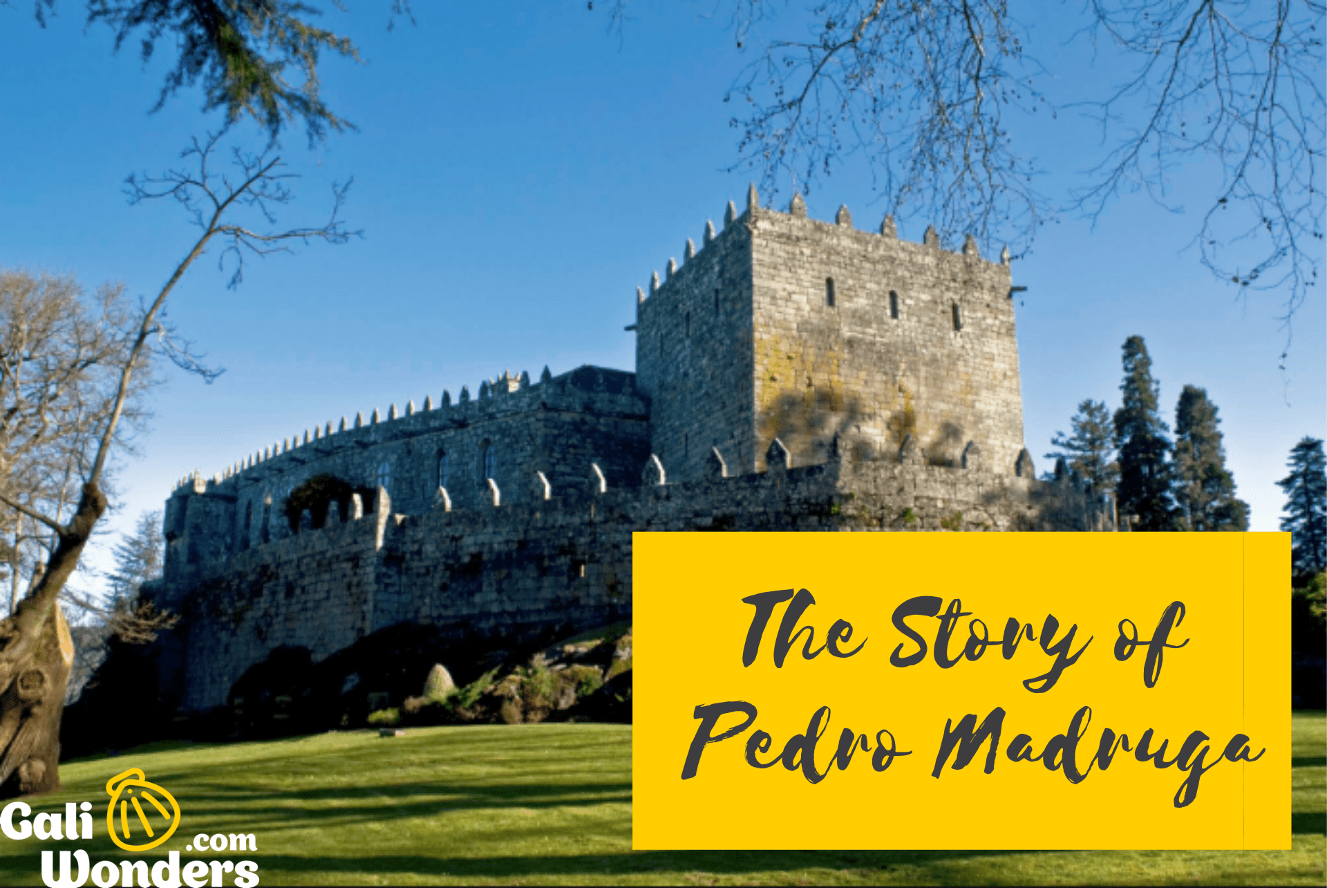 story Pedro Madruga