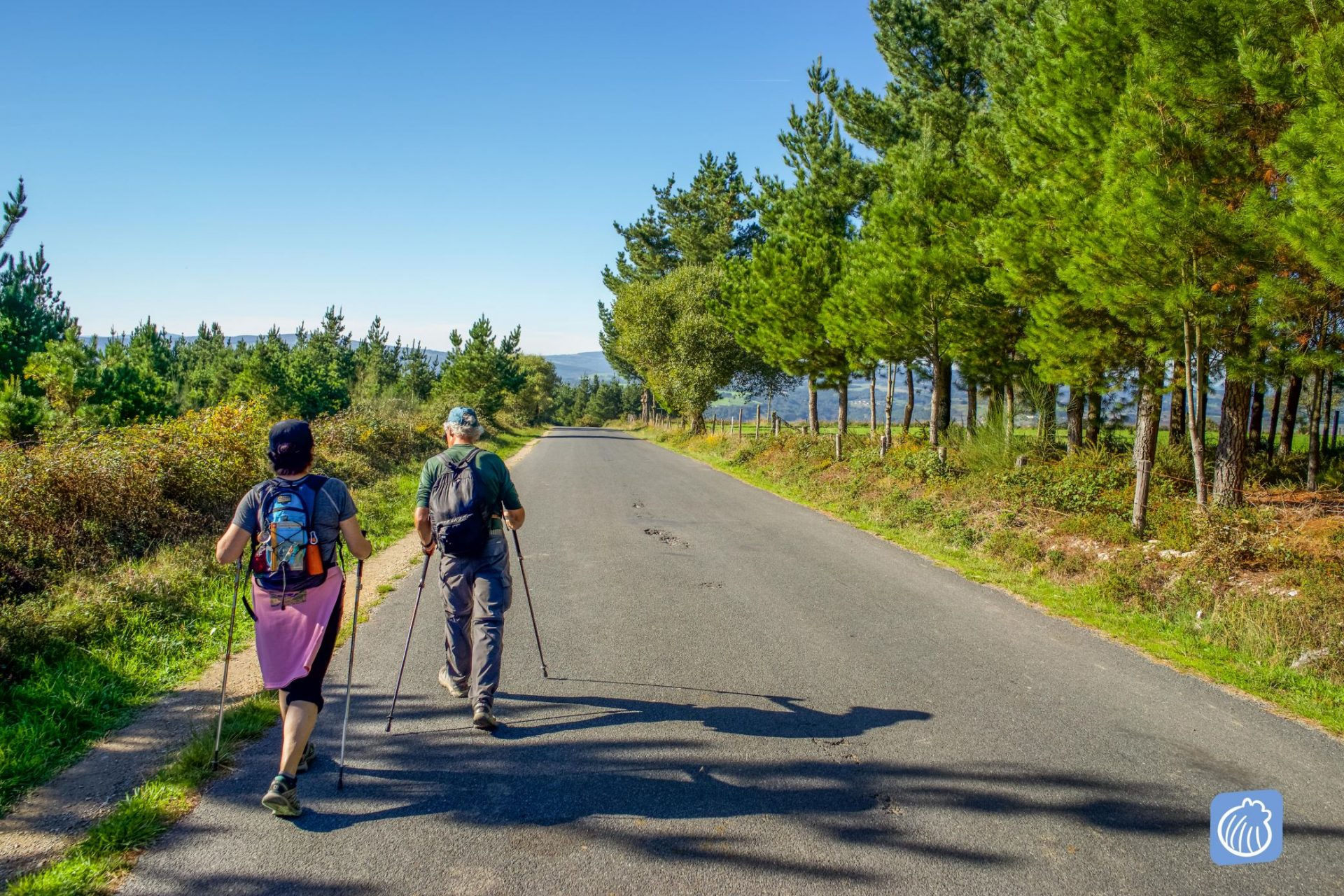 Cuántos días lleva hacer el Camino de Santiago
