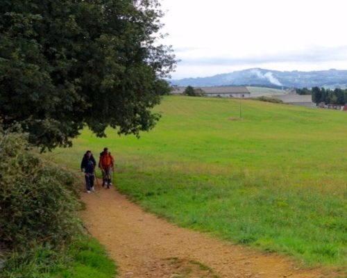 Camino Primitivo Galiwonders