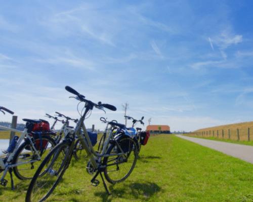 cammino francese bici completo