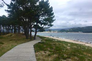 Camino de Santiago Portuguese Coastal Way Tours GaliWonders
