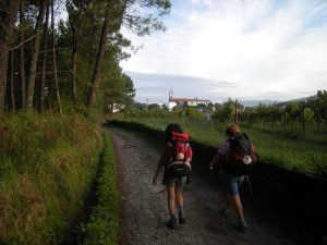 Walk the French Way Galiwonders