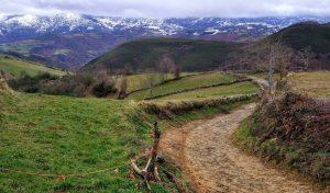 Camino Santiago tierra