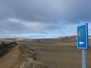 Camino de Santiago pista tierra