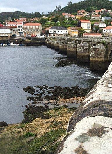 El camino Portugués