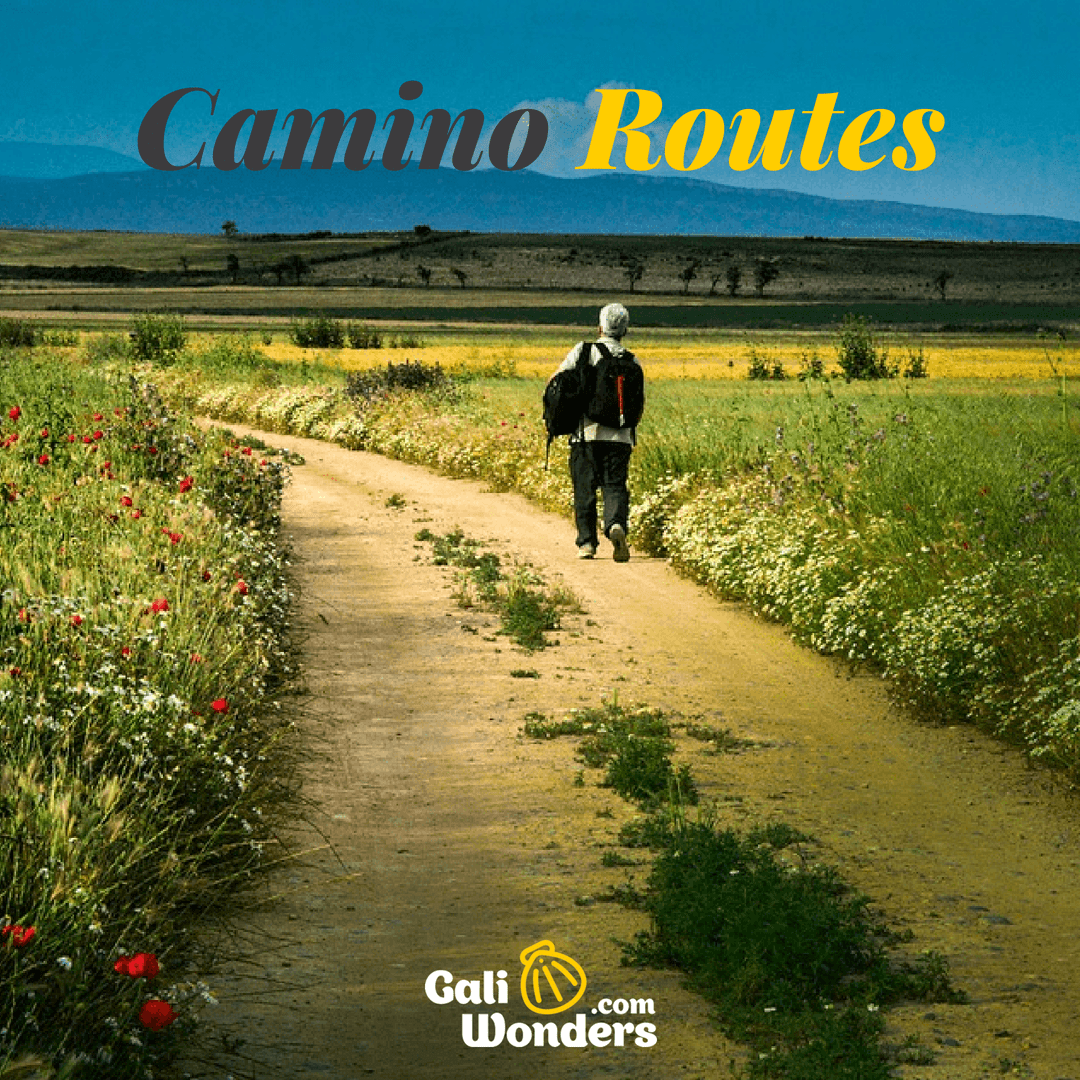 Most popular camino routes galiwonders
