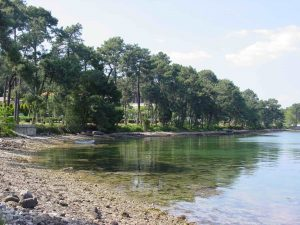 Ruta Jubilea del Mar de Arousa y Río Ulla Galiwonders