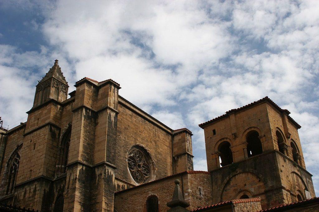 Oviedo Galiwonders