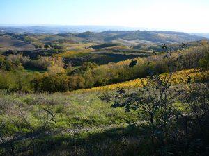 Via Francigena Toscana Galiwonders