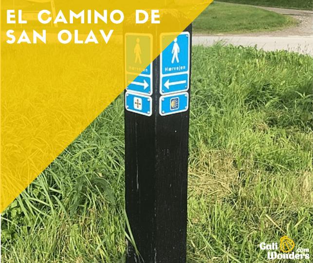 El Camino de san Olav galiwonders