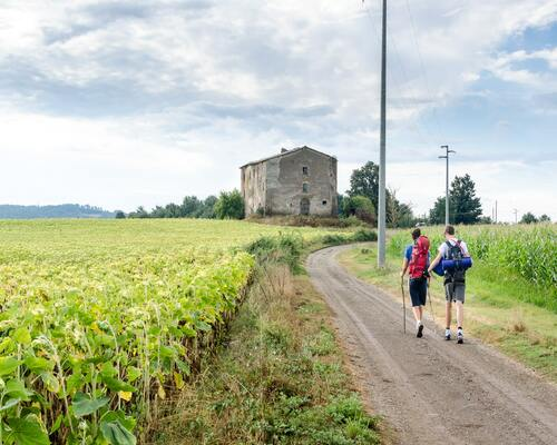 Via_Francigena_easy galiwonders