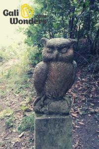Aldea Labrega Sculpture- Owl
