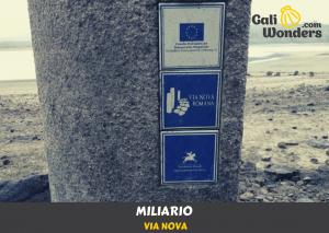 Miliario - Via Nova
