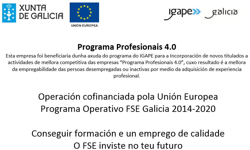 FSE-IG256-Profesionais40