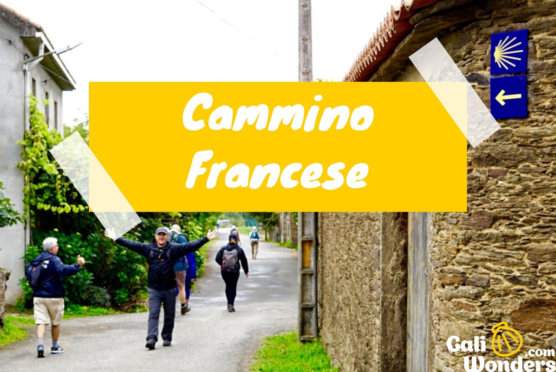 Cammino Francese Galiwonders