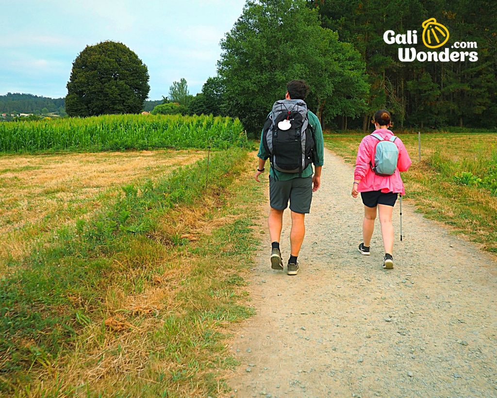 camino de santiago all you need to know 10 1