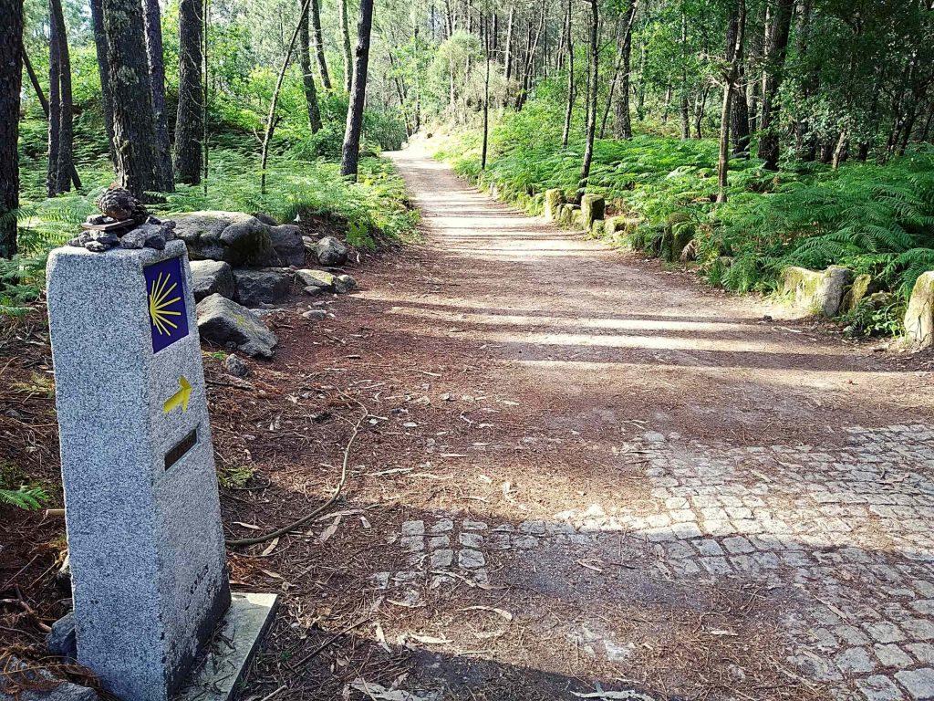 El Camino Portugués desde Valença
