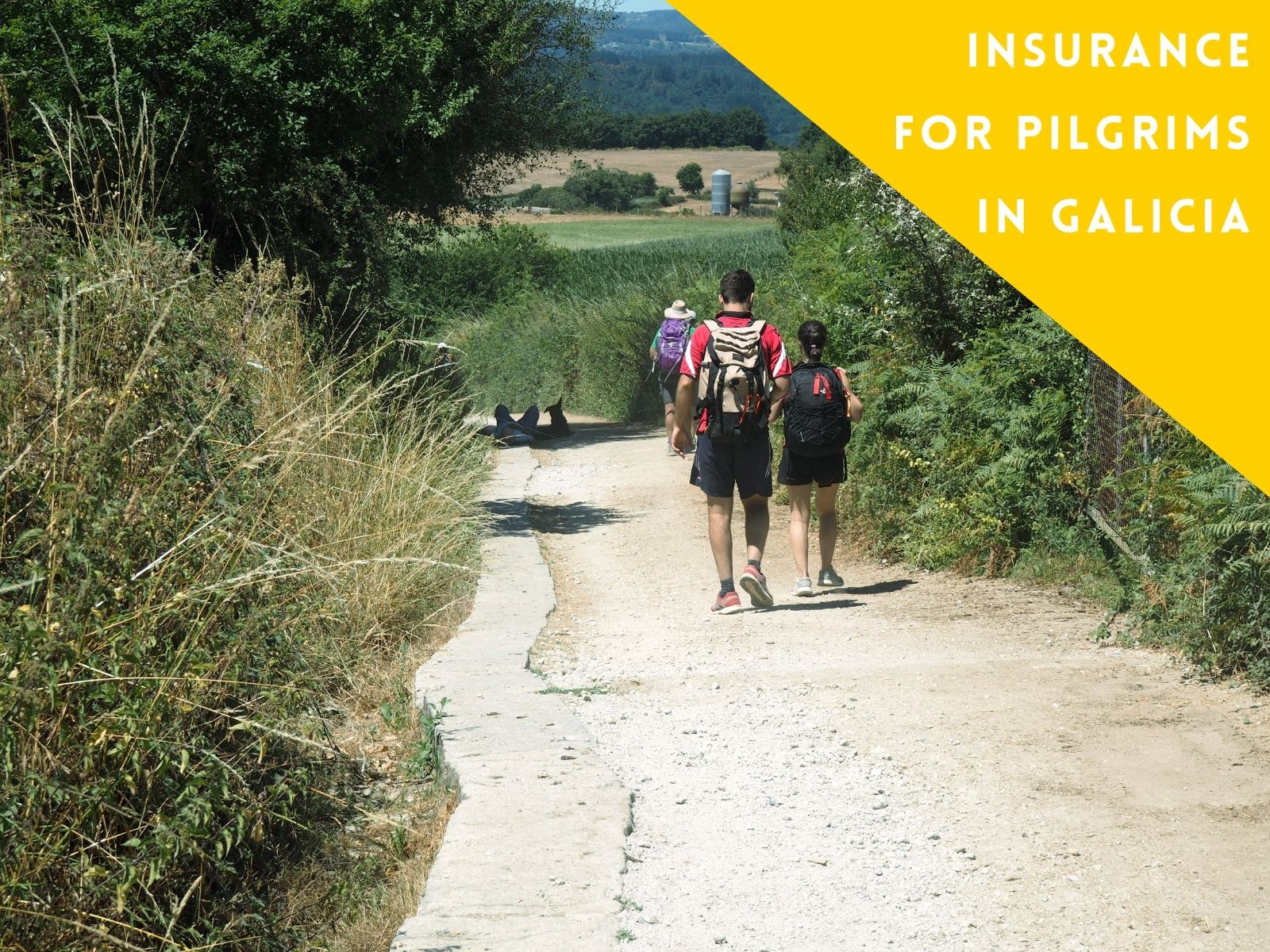 Insurance for pilgrims in Galicia