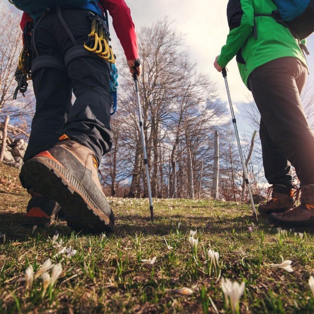How to decide the best Camino de Santiago route for you