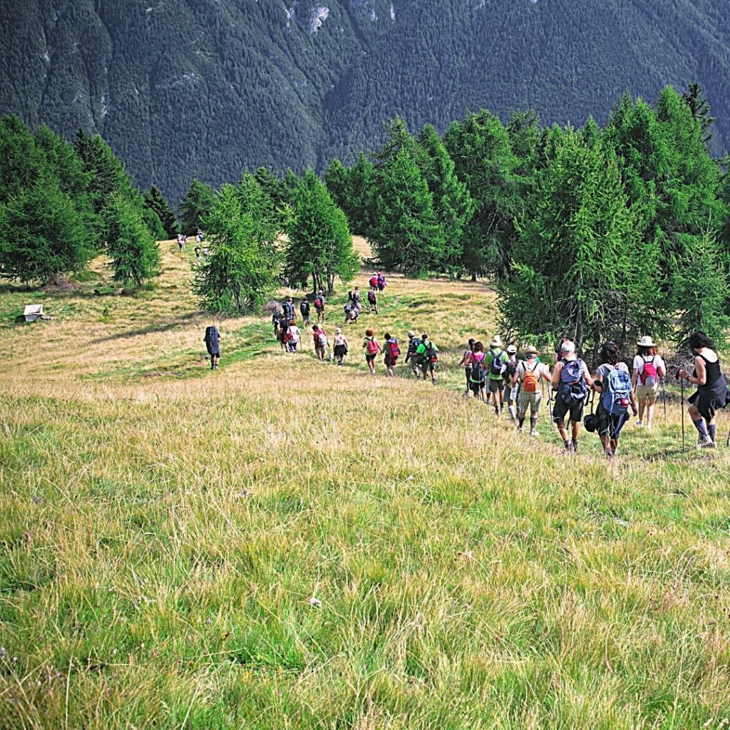 the best Camino route