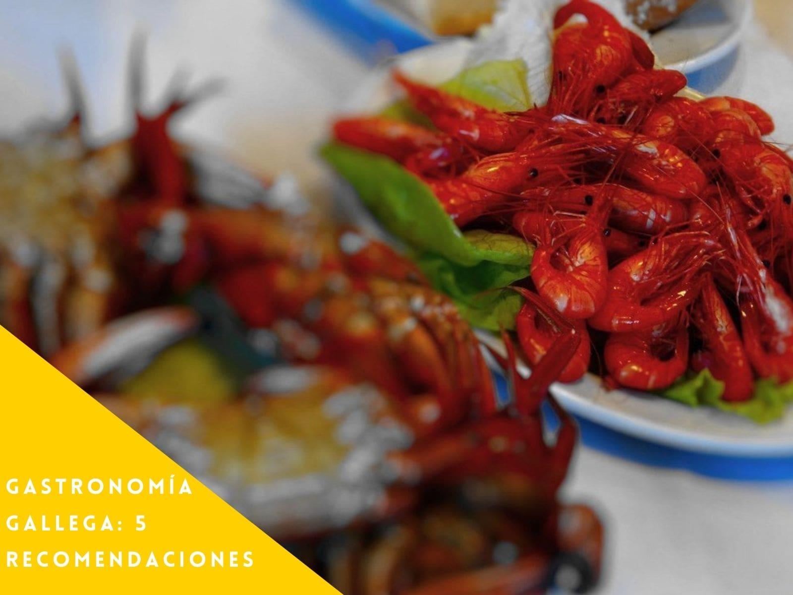 Gastronomía Gallega: 5 recomendaciones